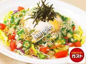 ちりめんじゃこと豆腐のねばとろサラダL 679円