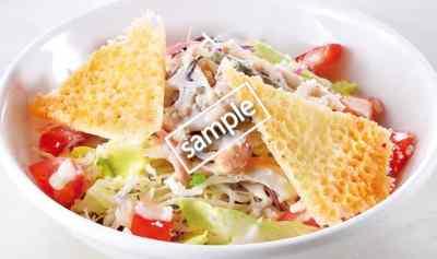 根菜とカリカリチーズの20品目シーザーサラダSサイズ 249円