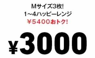 持ち帰り限定!ハッピーレンジ1〜4 Mサイズピザ3枚 3000円