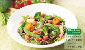 11種野菜の彩りサラダ