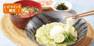 徳島県産すだちの冷製おろしうどん ミニ丼セット