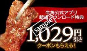 1029円引き